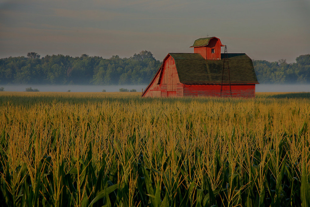 farm and crop insurance Hartford AL